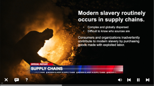 Modern Slavery in Supply Chains Training